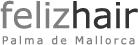 felizhair Logo